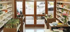 Loja Viva com Saúde em Bento Gonçalves